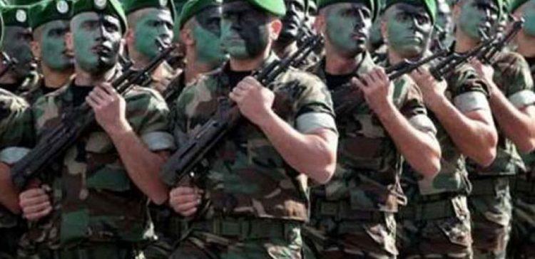 الجيشان الجزائري والمصري ضمن اقوى 25 جيشا في العالم